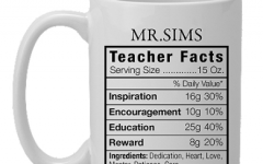 Sims teaching techniques build student-teacher relationships
