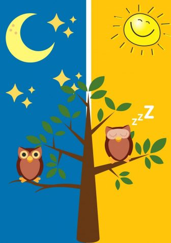 Night owls stay up late during the night and early mornings to do assignments and tend to not get enough sleep. Drowsiness sets in during the daytime while at school, work and extracurricular activities outside of school.